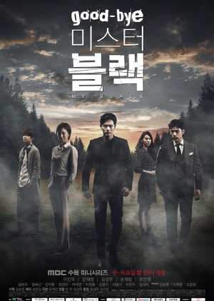 Korean Drama 굿바이 미스터 블랙 / Goodbye Mr. Black