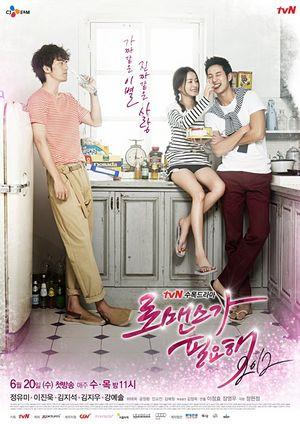 Korean Drama 로맨스가 필요해 2012 / Romaenseuka Pilyohae 2012
