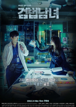 Korean Drama 검법남녀 / Investigation Couple / Partners for Justice