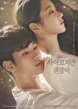 Korean Drama 사이코지만 괜찮아 / It's Okay to Not Be Okay / Psycho But It's Okay