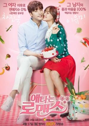 Korean Drama 애타는 로맨스 / My Secret Romance