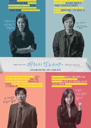 Korean Drama 미치지 않고서야 / On The Verge Of Insanity /  No One But a Madman