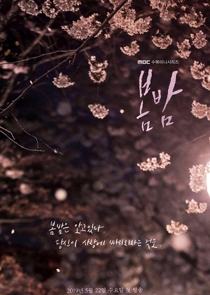 Korean Drama 봄밤 / One Spring Night