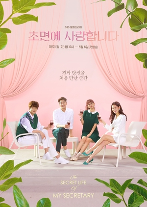 Korean Drama 초면에 사랑합니다 / The Secret Life of My Secretary / Love at First Sight / I Loved You from the Beginning / I Loved You from the Start