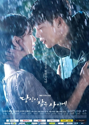 Korean Drama 당신이 잠든 사이에 / While You Were Sleeping